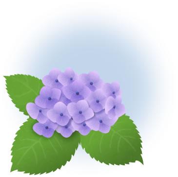 あじさい イラスト 紫 大