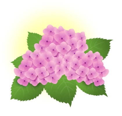 紫陽花 イラスト ピンク
