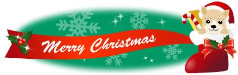 クリスマスブーツに入った柴犬とリボンのイラスト