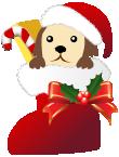 クリスマスブーツ犬