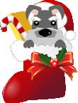 クリスマスブーツ犬 ミニチュア・シュナウザー