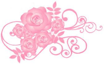 薔薇(バラ)イラスト素材画像 ピンク