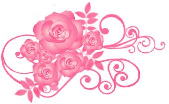 薔薇(バラ)イラスト素材画像 濃ピンク