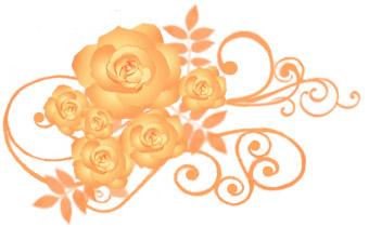 薔薇(バラ)イラスト素材画像 オレンジ