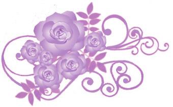 薔薇(バラ)イラスト素材画像 パープル