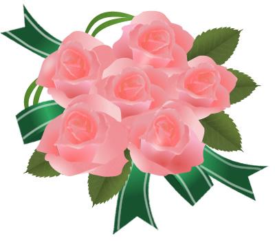 薔薇(ばら)画像 サーモンピンク